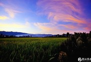 圖集:多彩墊江之秋色田園(九)
