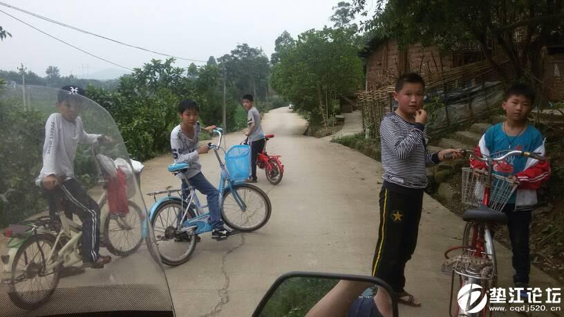 在路上看见几个熊孩子还在路上玩蛇.胆子还真大