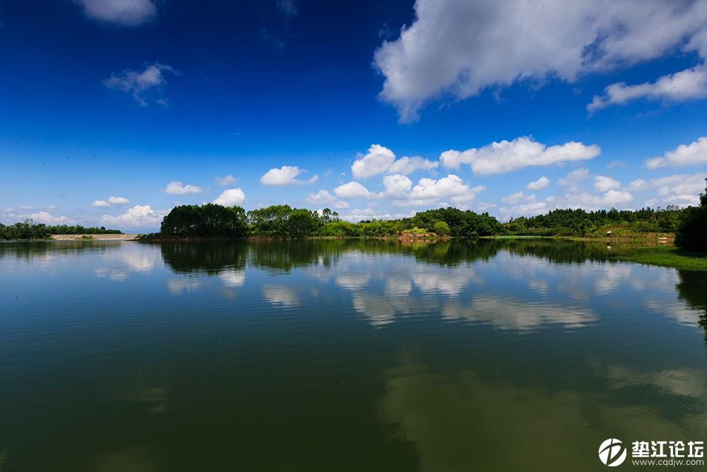 8湖平如镜  张信华.jpg