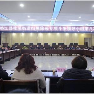 桂溪街道召开扫黑除恶专项斗争领导小组第八次会议